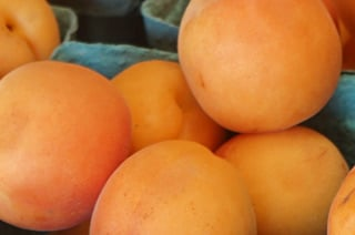 perrys fresh apricots