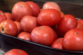 perrys fresh tomatos